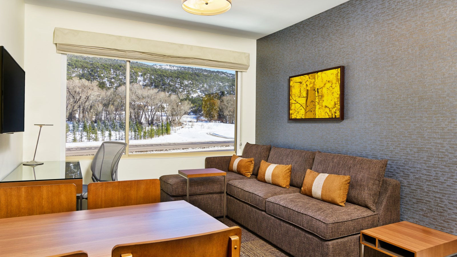 Basalt CO Accommodations - Executive Suite